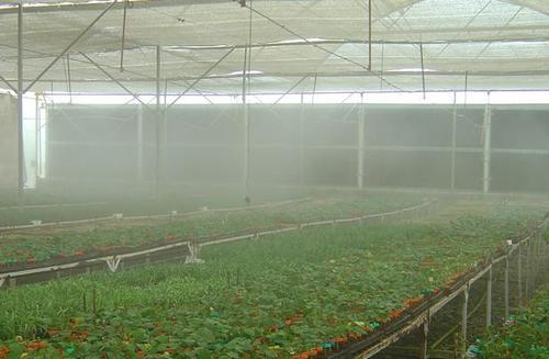 کنترل هوشمند مه پاش گلخانه و فن سیرکوله در گلخانه