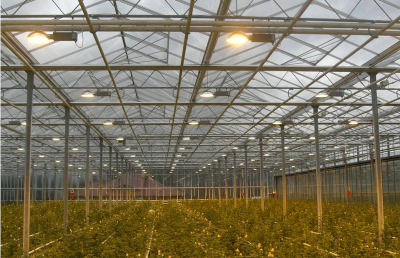 نحوه انتخاب نور گلخانه مناسب برای شما